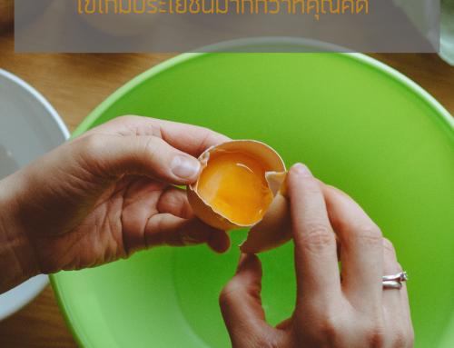 พรีออเดอร์จีน ไข่ไก่มีประโยชน์มากกว่าที่คุณคิด
