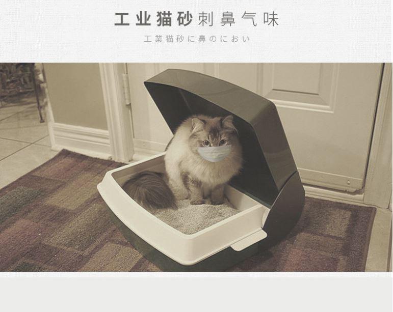 ชิปปิ้งจีนจัดการกลิ่นอุนจิน้องเหมียวด้วยนวัตกรรมใหม่ทรายดับกลิ่น