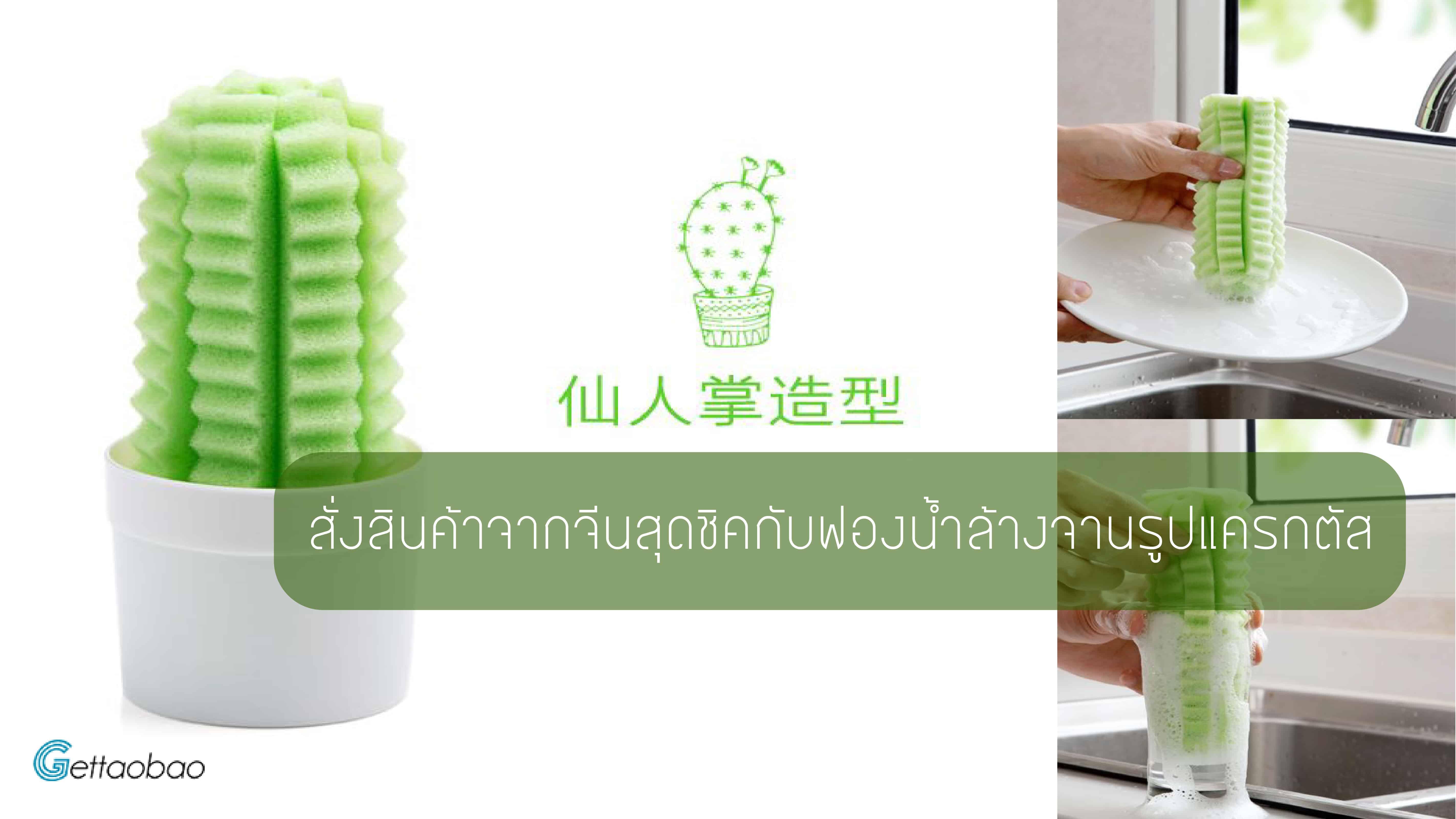 สั่งสินค้าจากจีนสุดชิคกับฟองน้ำล้างจานรูปแครกตัส